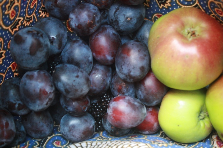Plums, Bramley apples and blackberries.  The bounty of a morning's foraging in late summer.