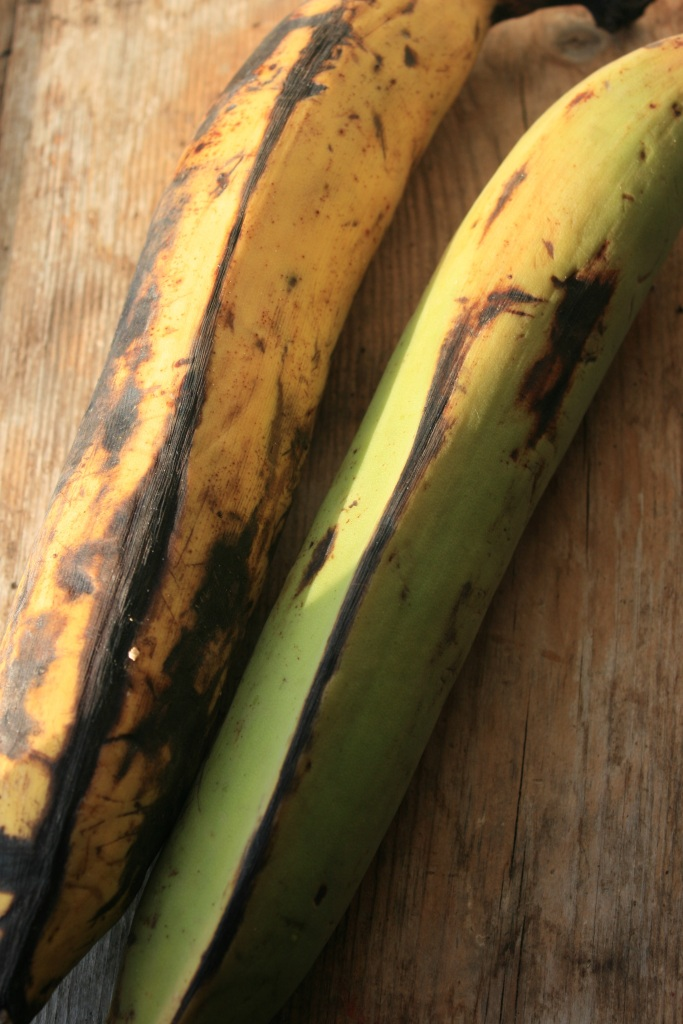 Plantain, the feature of this banana curry. Green bananas are also good.